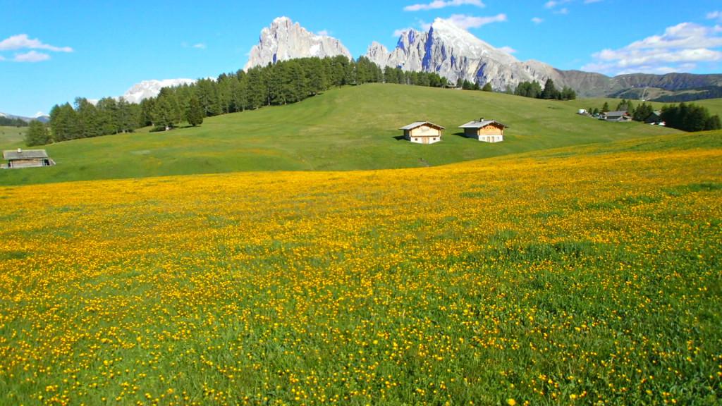 scenérie krajiny Parco Naturale Sciliar Catinaccio