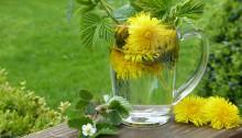 Existují určité přírodní postupy, díky kterým se člověk může z rakoviny vyléčit (Public  Domain)